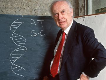 skynews-james-watson-dna-race_4544725[1]